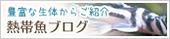 fish_121003.jpg